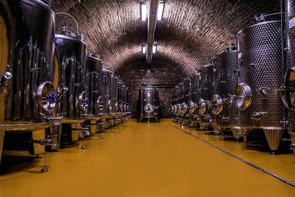 vinum-podrum