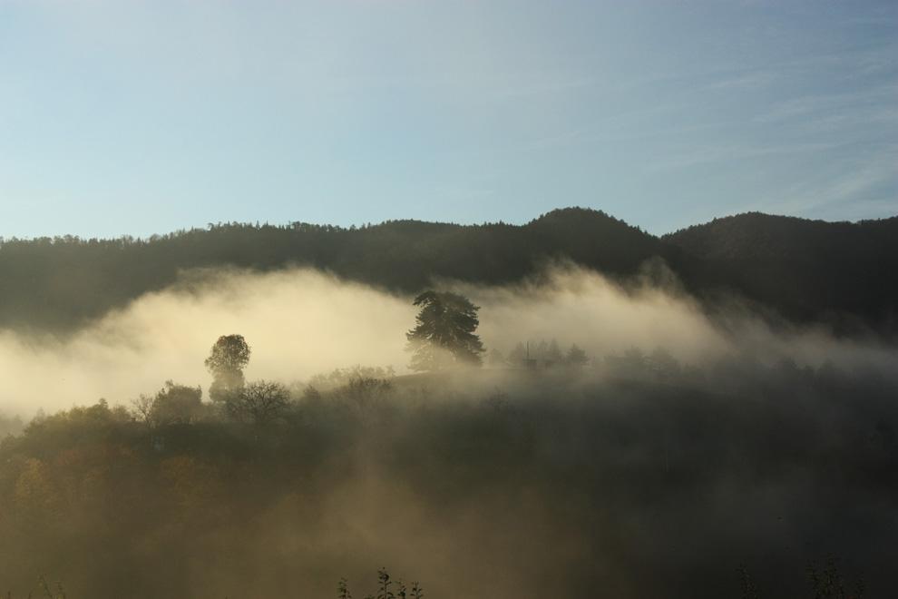 destilerija tok na obroncima planine goč