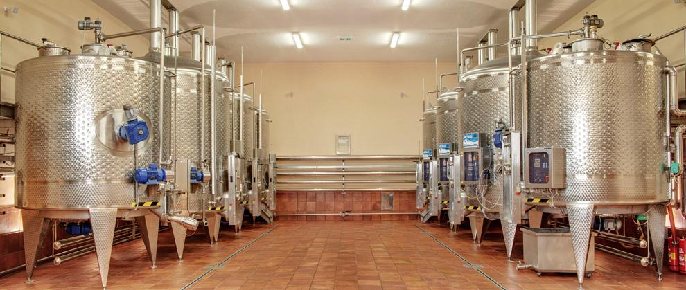 proizvodnja vina korta katarina