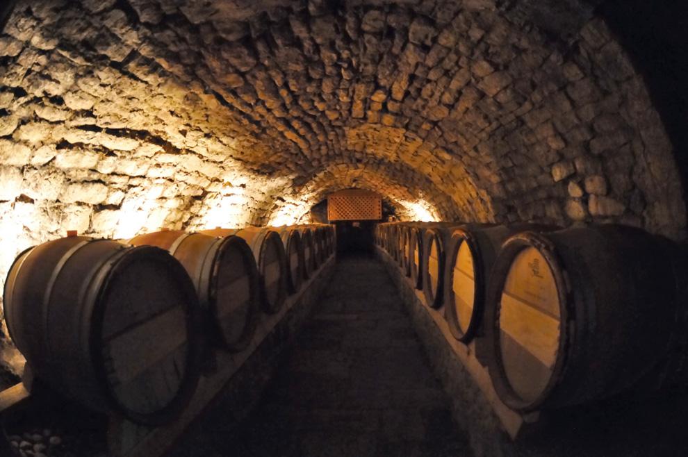 manastir tvrdoš odležavanje vina