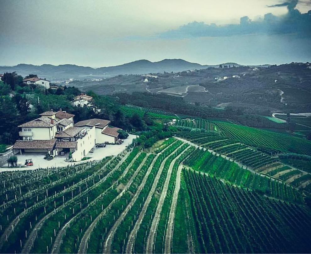 vinarija jakončič vinogradi goriška brda
