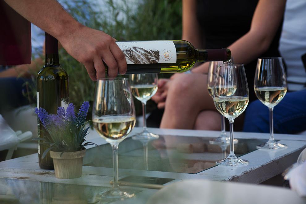 degustacija vina vinarije veličković